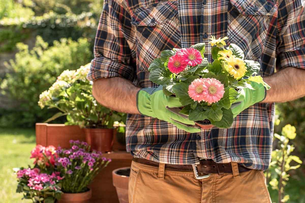 Gartenpflege Losheim